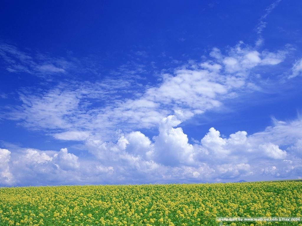 日耀之空 雲中雲 雲上雲